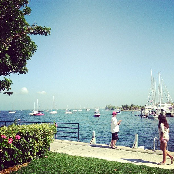coconut grove from scotty's landing